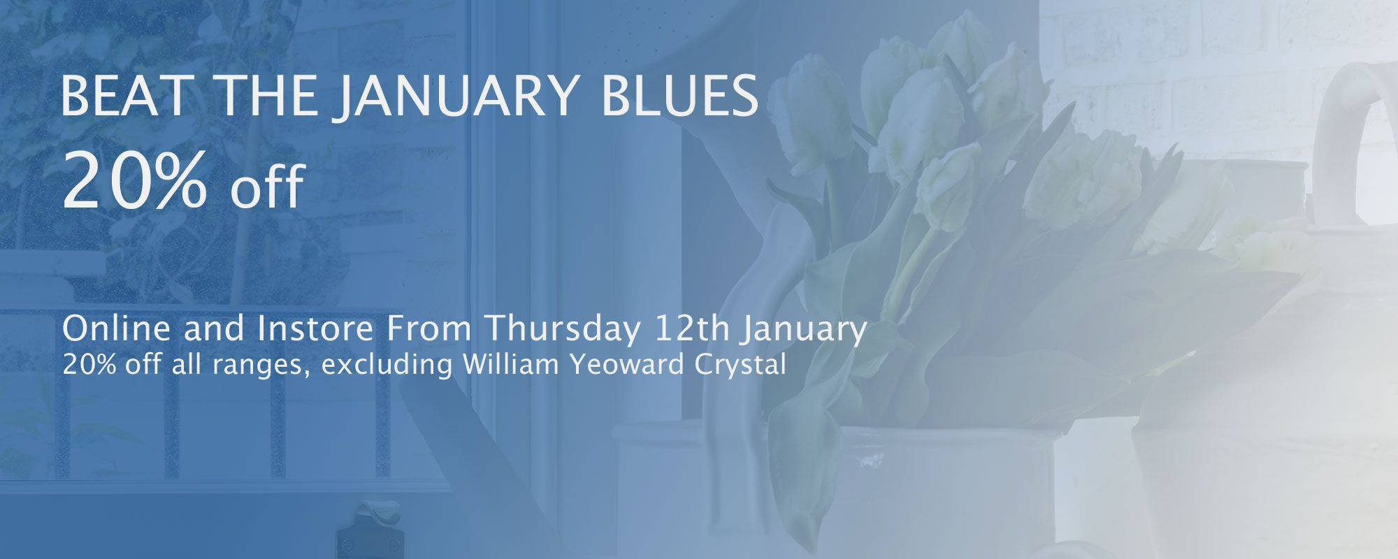 Beat the January blues with 20% off